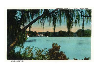 https://imgc.allpostersimages.com/img/posters/orlando-florida-lake-copeland-scene_u-L-Q1GPHQO0.jpg?p=0