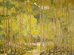 Aspen Forest by Oscar Berninghouse