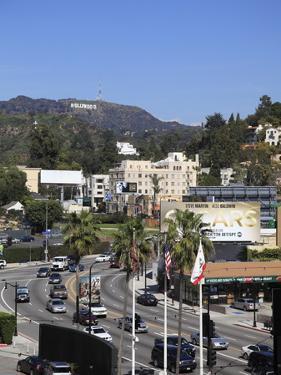 Oscars Billboard, Hollywood Sign, Hollywood, Los Angeles, California