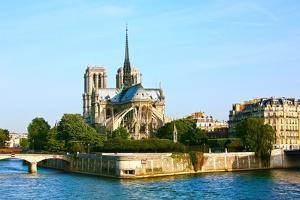 Notre Dame De Paris Carhedral on the La Seine Riversid by OSTILL