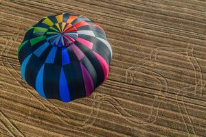 One Hot Air Balloon Gathering in the Countryside of France by OSTILL