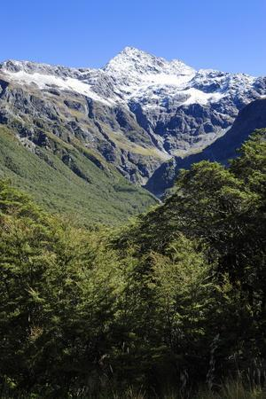 https://imgc.allpostersimages.com/img/posters/otira-gorge-road-arthur-s-pass-south-island-new-zealand-pacific_u-L-PQ8M0Z0.jpg?artPerspective=n