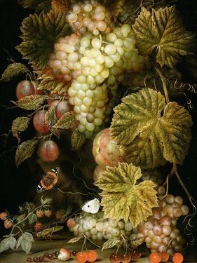 Still Life of Grapes and Vines, 1666 by Ottmar the Elder Elliger