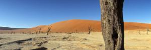 Dead Vlei Salt Pan, Sossusvlei, Namibia by Otto Bathurst