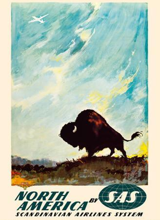 North America - by SAS Scandinavian Airlines System - American Bison (Buffalo) by Otto Nielsen