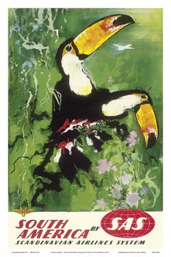 South America - Tocu Toucans - SAS Scandinavian Airlines System by Otto Nielsen
