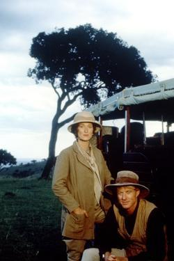 Out of Africa by Sydney Pollack with Meryl Streep and Robert Redford, 1985 (photo)