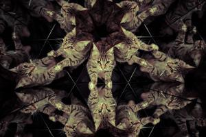Common Cat Inside a Kaleidoscope, Mirrors by outsiderzone