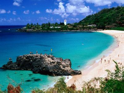 https://imgc.allpostersimages.com/img/posters/overview-of-waimea-bay-on-the-north-shore-waimea-u-s-a_u-L-P10R5A0.jpg?p=0
