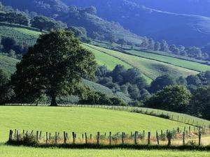 Pays Basques Countryside by Owen Franken