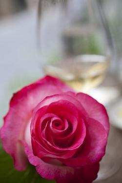 Restaurant, Paris - Pink Roses on the Table by Owen Franken