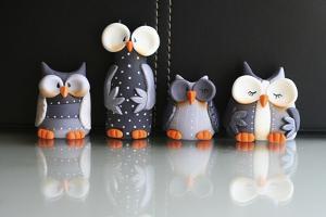 Owls Fifty Shades of Grey Lol