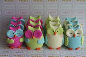 Owls Multi Color Brights Large Set