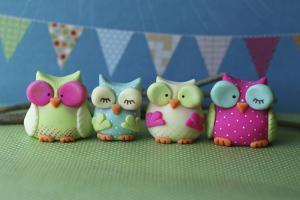 Owls Multi Color Brights
