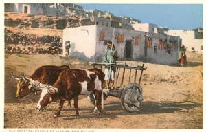 Ox Cart, Laguna Pueblo, New Mexico