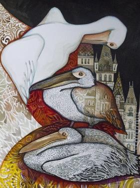Pelicans by Oxana Zaika
