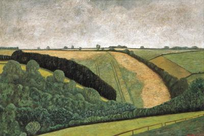 https://imgc.allpostersimages.com/img/posters/oxford-landscape-ii-1995_u-L-PJGL3X0.jpg?p=0