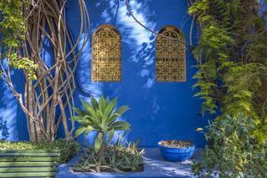 Majorelle Gardens in Marrakesh by p lange
