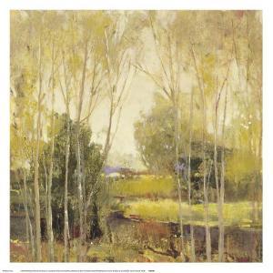 Autumn Scene II by P. Patrick