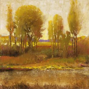 Golden Light I by P. Patrick