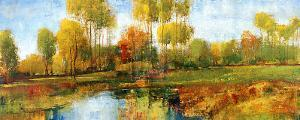 Meadowsweet by P. Patrick