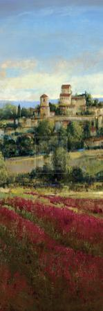 Tuscan Harvest I by P. Patrick
