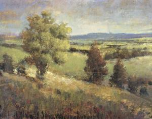 View from the Hill by P. Patrick