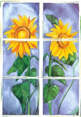 Sunflowers by P. Sonja