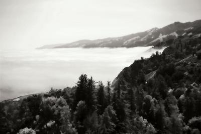 https://imgc.allpostersimages.com/img/posters/pacific-fog-ii_u-L-Q10PS940.jpg?p=0