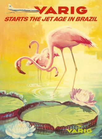 Brazil -Pink Flamingos wade in a Lily Pond - Variq Airlines by Pacifica Island Art