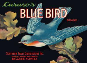 Caruso's Blue Bird Brand by Pacifica Island Art