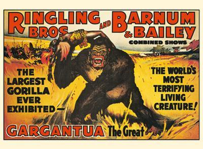 Gargantua, the Great Gorilla - Ringling Brothers and Barnum & Bailey Circus by Pacifica Island Art