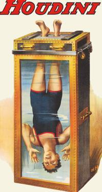 Harry Houdini - Water Torture Cell by Pacifica Island Art