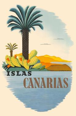 Islas Canarias (Canary Islands) - Palm Trees and Cactus by Pacifica Island Art
