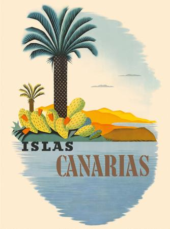 Islas Canarias (Canary Islands) - Palm Trees and Cactus
