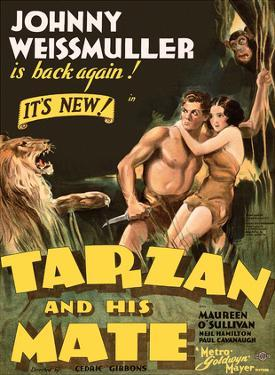 Tarzan and His Mate - Metro Goldwyn Mayer by Pacifica Island Art