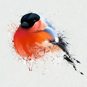 Pyrrhula. A Vivid Illustration of Bullfinch, close Up, with Elements of the Sketch and Spray Paint, by Pacrovka