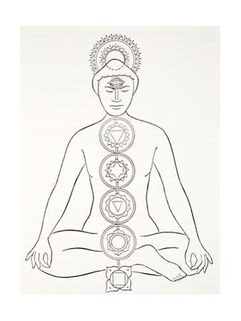 Padmasana or Lotus Position