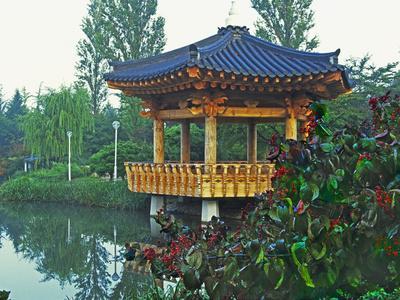 https://imgc.allpostersimages.com/img/posters/pagoda-next-to-lake-and-park-kyongju-south-korea_u-L-P240PU0.jpg?p=0