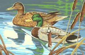 Paint by Numbers, Ducks Number One