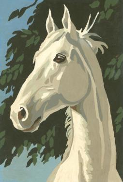 Paint by Numbers, Horse Portrait Number One