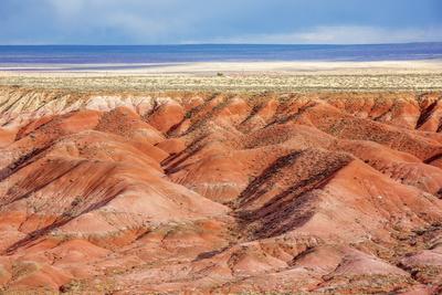 https://imgc.allpostersimages.com/img/posters/painted-desert-petrified-forest-national-park-arizona-usa_u-L-PN6LHQ0.jpg?p=0