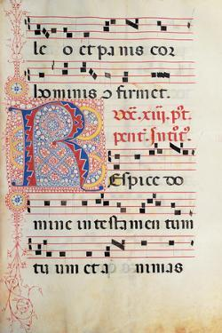 Gradual From Palm Sunday To the XXIV Sunday After Pentecost by painter