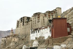 Palace in Leh with Lamo House Below. Ladakh, India, Asia by Thomas L
