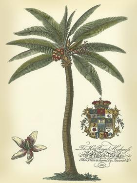 Palm and Crest I