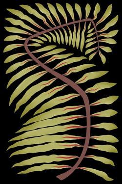 Palm Frond III
