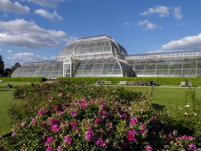 https://imgc.allpostersimages.com/img/posters/palm-house-in-kew-gardens-in-summer_u-L-PWFCXG0.jpg?p=0