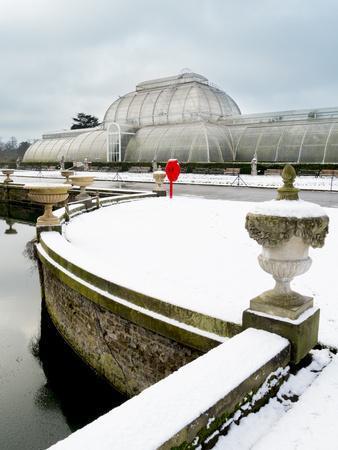 https://imgc.allpostersimages.com/img/posters/palm-house-in-kew-gardens-in-winter_u-L-PWFC5A0.jpg?p=0