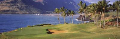 Palm Trees at Seaside, Kiele Course, Number 13, Kauai Lagoons Golf Club, Lihue, Hawaii, USA