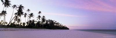 https://imgc.allpostersimages.com/img/posters/palm-trees-in-silhouette-near-bweju-island-of-zanzibar-tanzania-east-africa-africa_u-L-P2QS570.jpg?p=0
